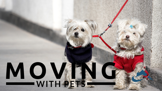 Moving with Pets. The Property Buyers Guide by Simply Altruism - Everything you needed to know about making the move with your loved pets as easy as possible